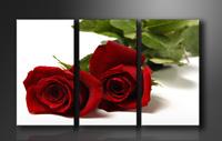 Leinwand Bild fert gerahmt Rose Rot 160cm XXL 3 1095