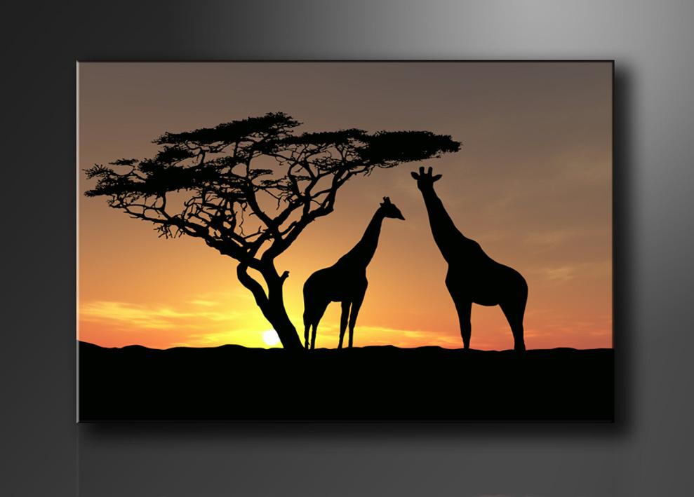 Die Fototapete im Afrika Stil