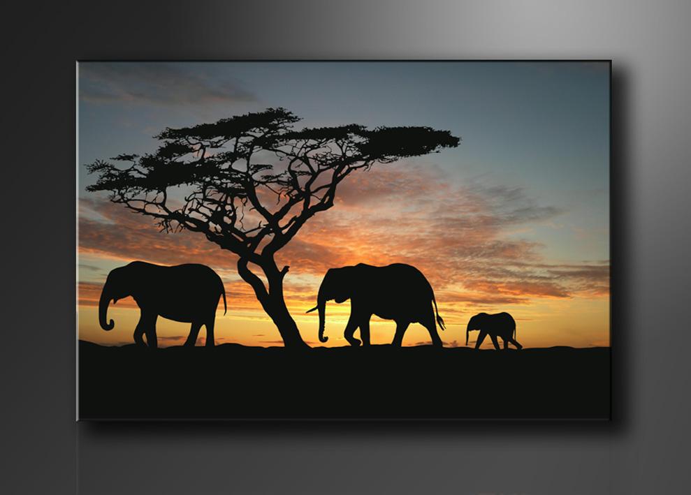 afrika bilder fertig gerahmt bild 120x80cm xxl 5066. Black Bedroom Furniture Sets. Home Design Ideas