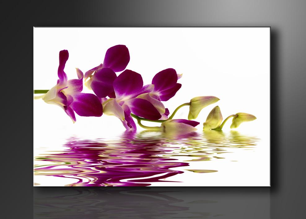 leinwand bild fert gerahmt orchidee 120cm xxl 3 5132. Black Bedroom Furniture Sets. Home Design Ideas