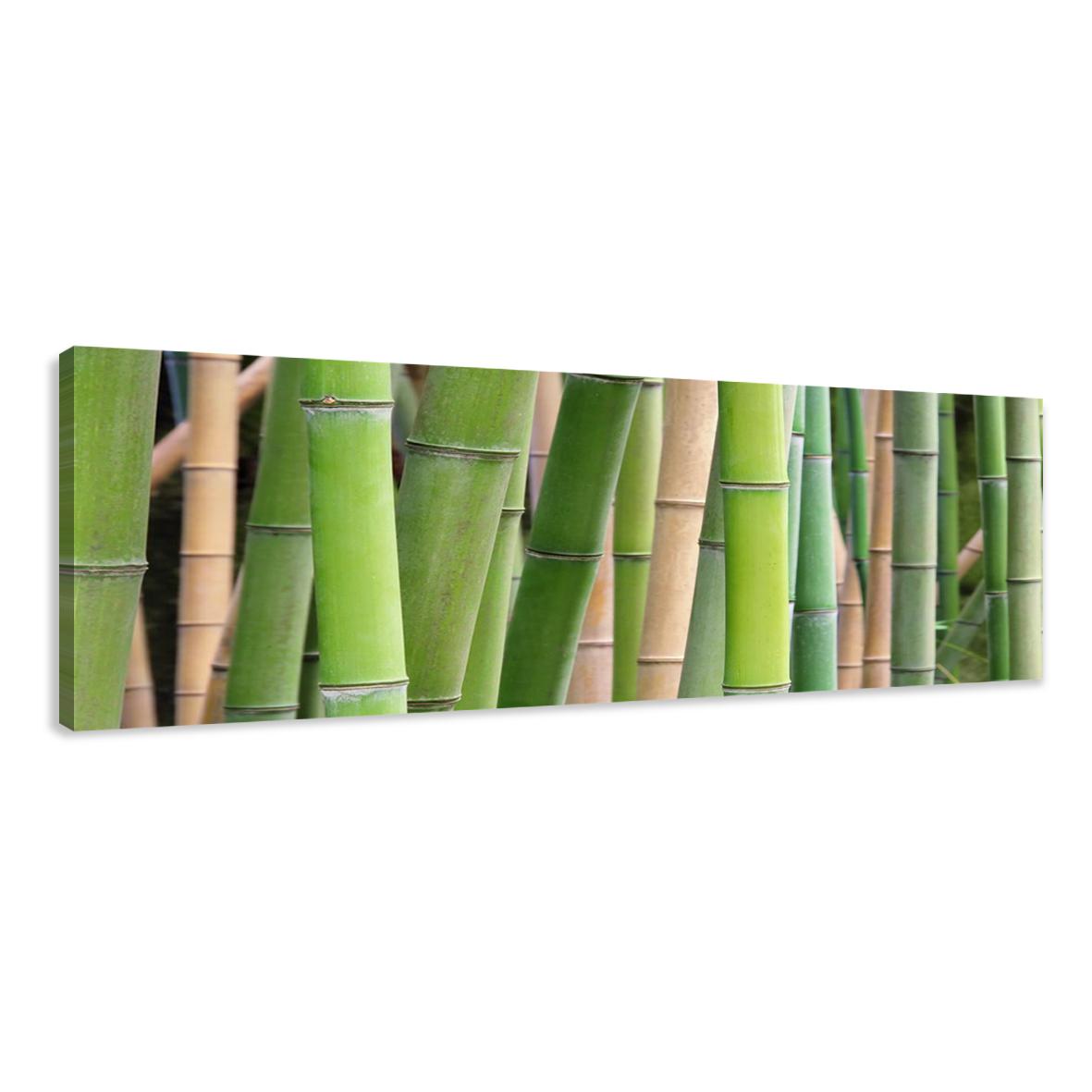 visario bild auf leinwand markenware bambus 120cm xxl 1 5705 ebay. Black Bedroom Furniture Sets. Home Design Ideas