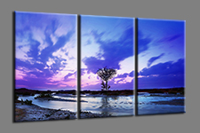 "Pictures on canvas length length 63"" height 35"" Nr 1001"