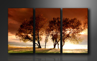 "Pictures on canvas length length 63"" height 35"" Nr 1025 nature"