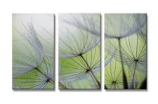 Leinwand Bild fert gerahmt Blumen 160cm XXL 3 1167