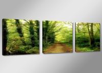 Leinwand Bild fert gerahmt grüner Weg Natur 150 x 50 cm XXL 3 4223