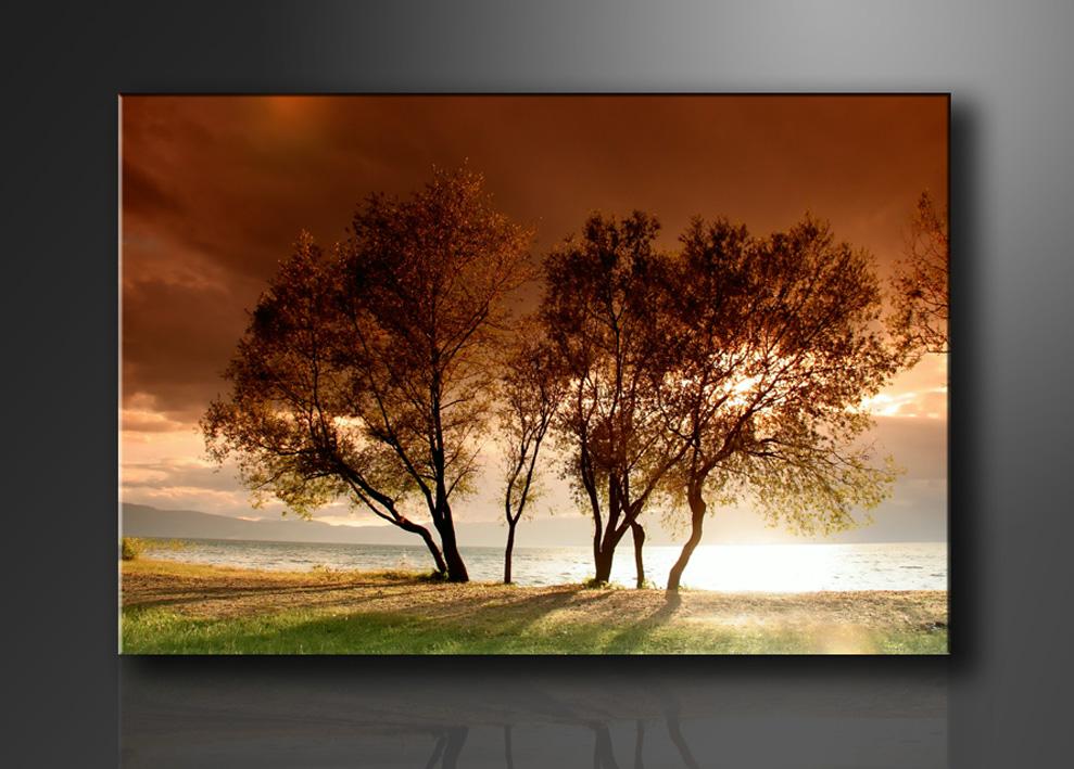 Natur bilder fertig gerahmt bild 120x80cm xxl 5025 for Schilderij natuur