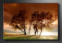 Natur Bilder fertig gerahmt Bild 120x80cm XXL 5025