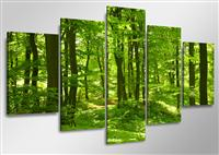 "Pictures on canvas length length 63"" height 31"" Nr 5507 trees"