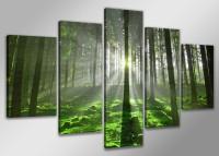 Leinwand Bild fert gerahmt Wald 200cm XXL 5 6312