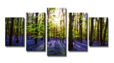 Leinwand Bild fert gerahmt Lavendel Wald 200cm XXL 5 6319