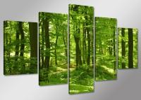 Leinwand Bild fert gerahmt Wald  100cm XXL 5 6411